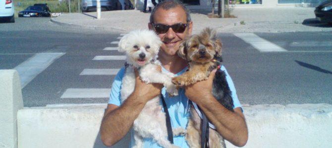 Vacanze in Spagna con i cani: come comportarsi.