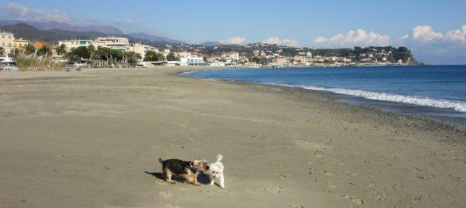 Liguria in camper : da Arenzano a Pietra Ligure
